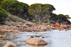Κόλπος αποθηκών: Δυτική Αυστραλία ζάλης Στοκ εικόνες με δικαίωμα ελεύθερης χρήσης
