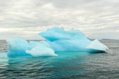 Κόλπος Αλάσκα παγετώνων παγόβουνων Στοκ Εικόνα
