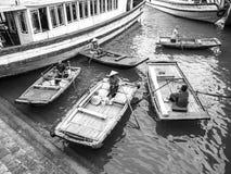 κόλπος εκτάριο μακρύς Στοκ Φωτογραφίες