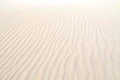 Κόλπος κοραλλιών, δυτική Αυστραλία Στοκ Φωτογραφίες
