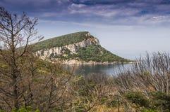 Κόλπος της Σαρδηνίας Cala Moresca Στοκ Εικόνα