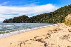 Κόλπος φλοιών στο εθνικό πάρκο του Abel Tasman, Νέα Ζηλανδία Στοκ Φωτογραφία