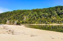 Κόλπος φλοιών στο εθνικό πάρκο του Abel Tasman, Νέα Ζηλανδία Στοκ φωτογραφίες με δικαίωμα ελεύθερης χρήσης