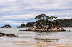 Κόλπος χείμαρρων στο εθνικό πάρκο του Abel Tasman, Νέα Ζηλανδία Στοκ Φωτογραφία
