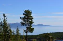 Κόλπος Kandalksha Καλοκαίρι Στοκ Φωτογραφίες