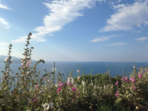 Κόλπος Lustice στο Μαυροβούνιο Στοκ εικόνα με δικαίωμα ελεύθερης χρήσης