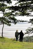 Κόλπος Morecambe άποψης από Arnside Knott, Cumbria Στοκ εικόνες με δικαίωμα ελεύθερης χρήσης