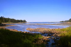 Κόλπος Novososnovy Στοκ φωτογραφία με δικαίωμα ελεύθερης χρήσης