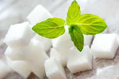 Κύβοι άσπρης ζάχαρης με τη φρέσκια μέντα Στοκ Φωτογραφία