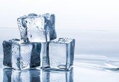 Κύβοι πάγου καθορισμένοι απομονωμένοι στο μπλε υπόβαθρο Στοκ Φωτογραφία