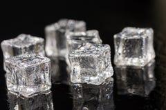 Κύβοι πάγου με τις πτώσεις του νερού στο μαύρο υπόβαθρο με τις αντανακλάσεις Στοκ Εικόνα