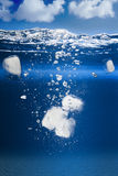 Κύβοι πάγου που περιέρχονται σε ένα ενυδρείο Στοκ Φωτογραφία