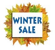 Κύβος με το φύλλο φθινοπώρου μερών γύρω και χειμερινή πώληση λέξης που απομονώνεται Στοκ εικόνες με δικαίωμα ελεύθερης χρήσης