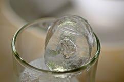 Κύβος πάγου στο γυαλί Στοκ φωτογραφίες με δικαίωμα ελεύθερης χρήσης