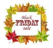 Κύβος τα φύλλα φθινοπώρου γύρω και τη μαύρη πώληση Παρασκευής λέξης που απομονώνεται με Στοκ φωτογραφία με δικαίωμα ελεύθερης χρήσης