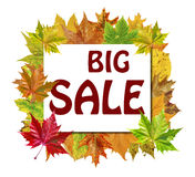 Κύβος τα φύλλα φθινοπώρου γύρω και τη μεγάλη πώληση λέξης που απομονώνεται με στο λευκό Στοκ Εικόνες