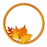 Κύκλος με τα φύλλα φθινοπώρου στο άσπρο υπόβαθρο διανυσματική απεικόνιση