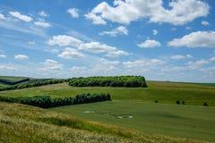 Κύκλος συγκομιδών σε έναν τομέα στο Wiltshire, Αγγλία Στοκ φωτογραφίες με δικαίωμα ελεύθερης χρήσης