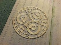 Κύκλος συγκομιδών cornfield κοντά σε Rasiting στοκ εικόνα με δικαίωμα ελεύθερης χρήσης