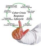 Κύκλος της ζωής απάντησης κρίσης Cyber Στοκ εικόνα με δικαίωμα ελεύθερης χρήσης