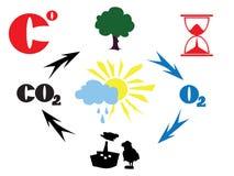 κύκλος του CO2 Στοκ Εικόνες