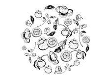 Κύκλος των πορφυρών mangosteen φρούτων και των στοιχείων λουλουδιών, χέρι που σύρεται σε γραπτό ελεύθερη απεικόνιση δικαιώματος