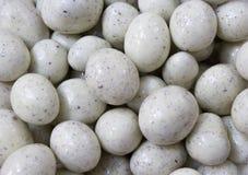 Κύκλος υπό μορφή dragee αυγών στοκ εικόνες
