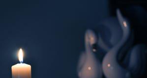 κύκνοι Στοκ Φωτογραφίες