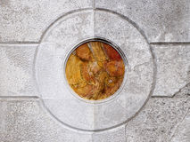 κύκλοι ομόκεντροι Στοκ Εικόνα