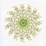 Κύκλος άνοιξη των εγκαταστάσεων σε ένα άσπρο watercolor υποβάθρου Στοκ Φωτογραφίες