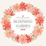 κύκλος πλαισίων λουλο& Στοκ Εικόνες