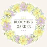 κύκλος πλαισίων λουλο& Στοκ εικόνα με δικαίωμα ελεύθερης χρήσης