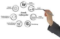 Κύκλος της ζωής τροφίμων Στοκ Φωτογραφίες