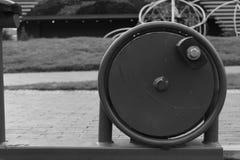 Κύκλος της ζωής Στοκ εικόνες με δικαίωμα ελεύθερης χρήσης