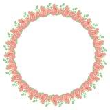 κύκλος τριαντάφυλλων πλ&a διάστημα αντιγράφων Στοκ Φωτογραφία