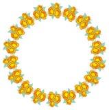κύκλος τριαντάφυλλων πλ&a διάστημα αντιγράφων Στοκ φωτογραφίες με δικαίωμα ελεύθερης χρήσης
