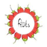 Κύκλος των juicy φραουλών απεικόνιση αποθεμάτων