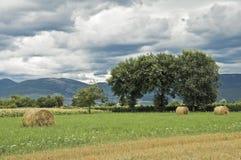 κύλισμα θυμωνιών χόρτου ε& Στοκ Φωτογραφίες