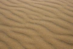 Κύματα άμμου στην παραλία Στοκ εικόνα με δικαίωμα ελεύθερης χρήσης