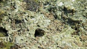 Κύματα & βράχοι Στοκ εικόνα με δικαίωμα ελεύθερης χρήσης