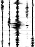 κύματα γραφικών παραστάσεων σεισμού Στοκ Φωτογραφία