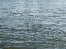 Κύματα ενός ποταμού Στοκ Φωτογραφία