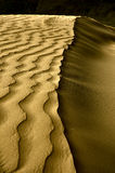 Κύματα ερήμων Στοκ Εικόνες