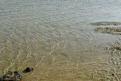 Κύματα θάλασσας στην ακροθαλασσιά στην αμμώδη παραλία Στοκ φωτογραφία με δικαίωμα ελεύθερης χρήσης