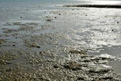 Κύματα θάλασσας στην ακροθαλασσιά στην αμμώδη παραλία Στοκ φωτογραφίες με δικαίωμα ελεύθερης χρήσης