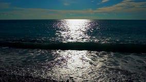 Κύματα θάλασσας στην παραλία Δέντρα και θάλασσα Κύματα θάλασσας στην παραλία απόθεμα βίντεο