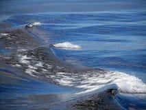 Κύματα ιχνών Στοκ Φωτογραφίες