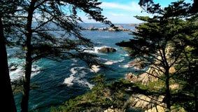 Κύματα κάτω από το Treeline στοκ εικόνες με δικαίωμα ελεύθερης χρήσης