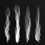 Κύματα καπνού που τίθενται στο διαφανές υπόβαθρο Κύματα καπνού τσιγάρων, καυτός ατμός, υδρονέφωση ελεύθερη απεικόνιση δικαιώματος