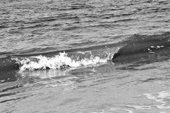 Κύματα παραλιών της Φλώριδας Στοκ Φωτογραφίες